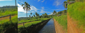 In 2016, Hedcor adopted four kilometers of the Talomo River under the DENR's Adopt-a-River program and has been continuously implementing environmental initiatives like river clean-up drives, eco-market efforts, and tree planting activities.