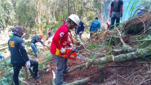 Aboitiz BUs aid firefighters on Mt. Apo