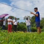 Our guide shared details that included the farm's history, partners involved, services offered by the farm, and the social enterprises supported.